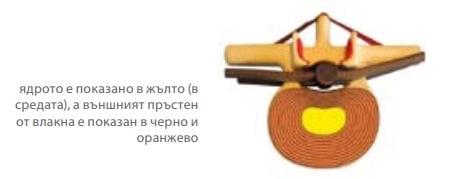 Гръбначен диск
