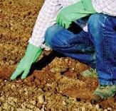 Безопасна употреба на третирани семена